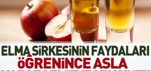 Elma Sirkesinin Yüz ve Vücuttaki Faydaları